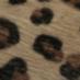 Poulain imprimé léopard